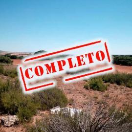 Ojeos de Perdiz en Higueruela 2018-2019