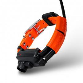 Collar Adicional Dogtrace X30-B